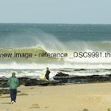 _DSC9991.thumb.jpg