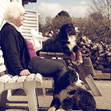 – Mormor og hundene nyder forårssolen
