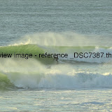 _DSC7387.thumb.jpg
