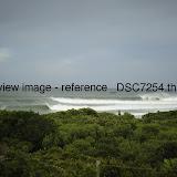 _DSC7254.thumb.jpg