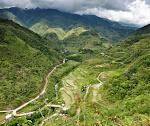 Banaue: rizières d'Hapao