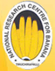ICAR-NRCB Trichy Recruitment Office Assistant Vaccines 2020