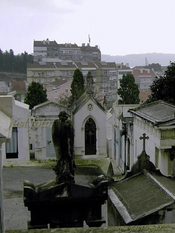 Памятники и склепы на кладбище Празереш фото