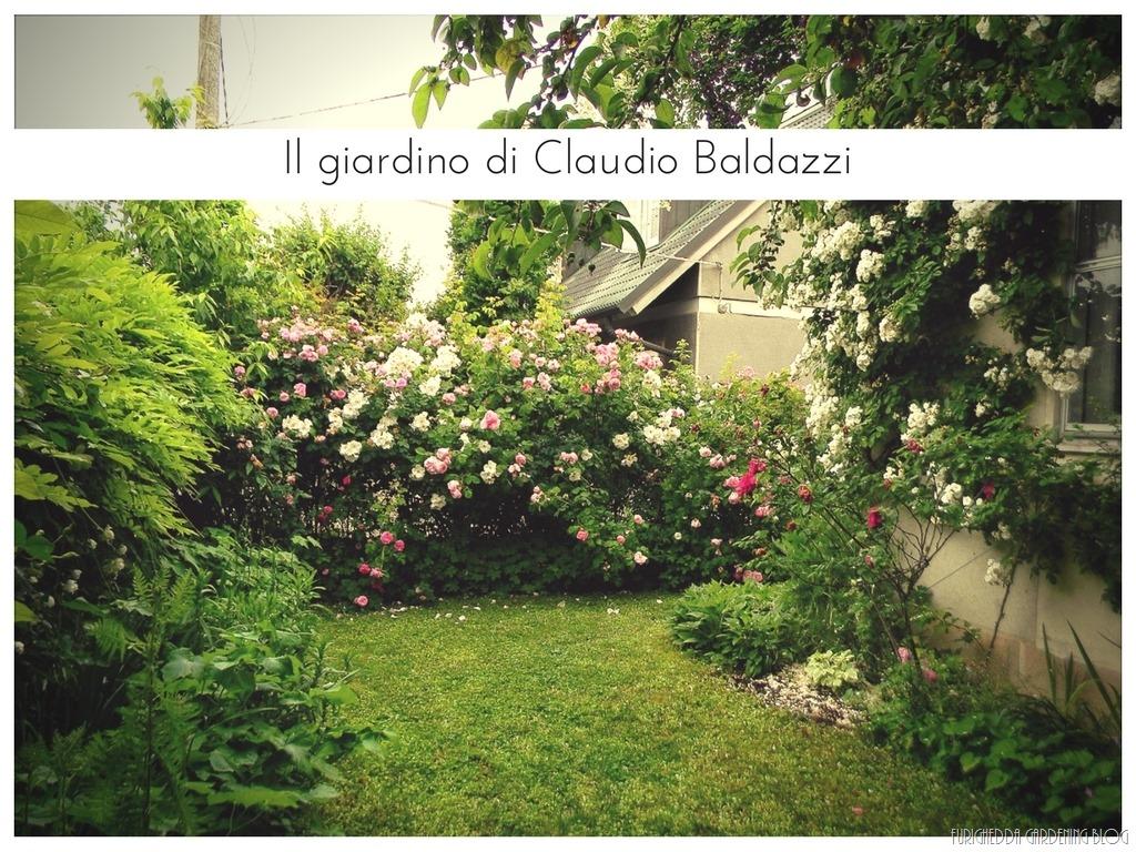 [Il+giardino+di+Claudio+%282%29%5B14%5D]