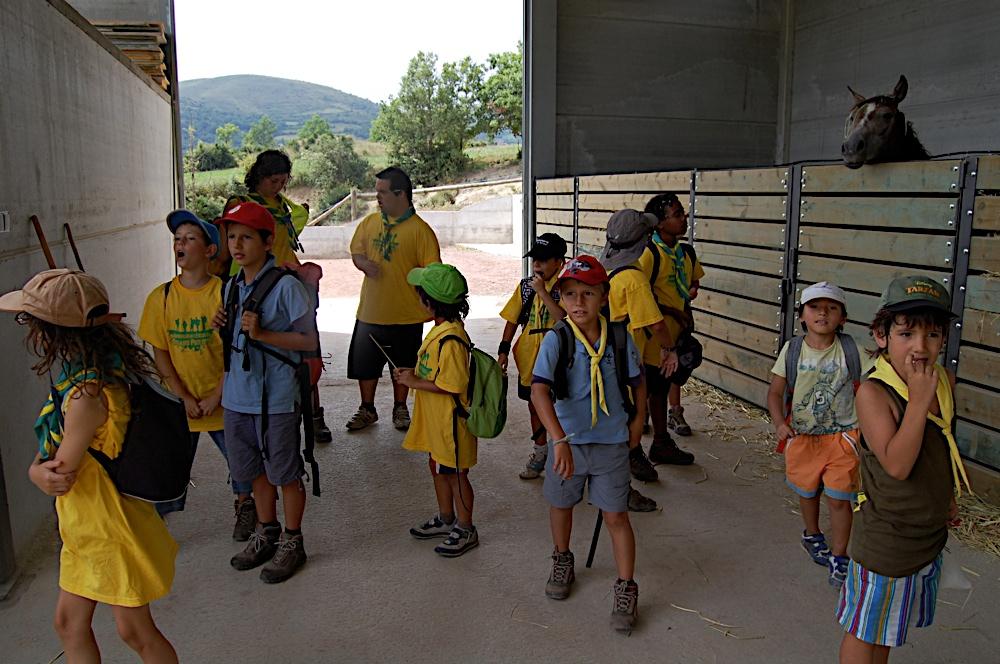 Campaments dEstiu 2010 a la Mola dAmunt - campamentsestiu340.jpg