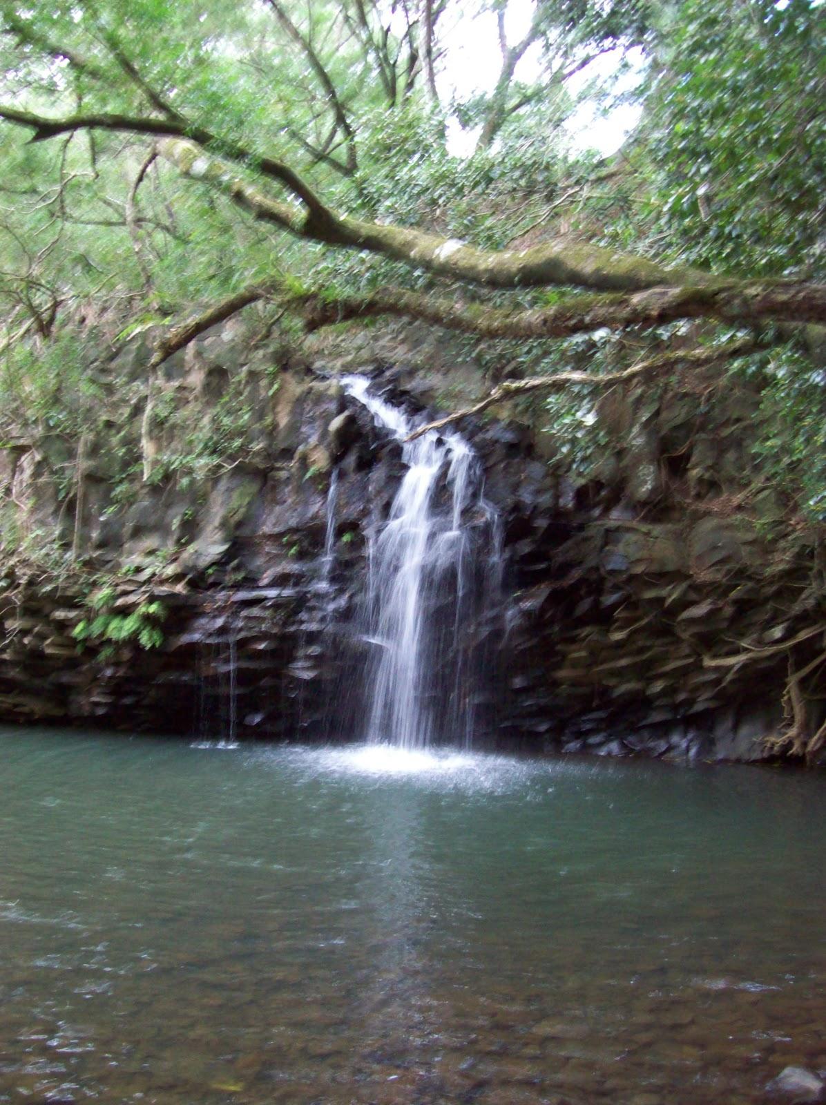 Hawaii Day 5 - 100_7313.JPG