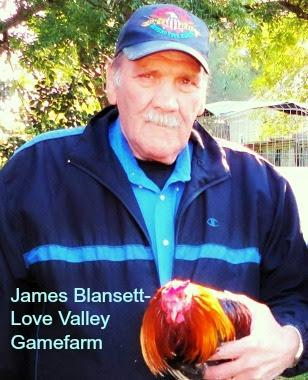 james blansett-love valley gamefarm.jpg