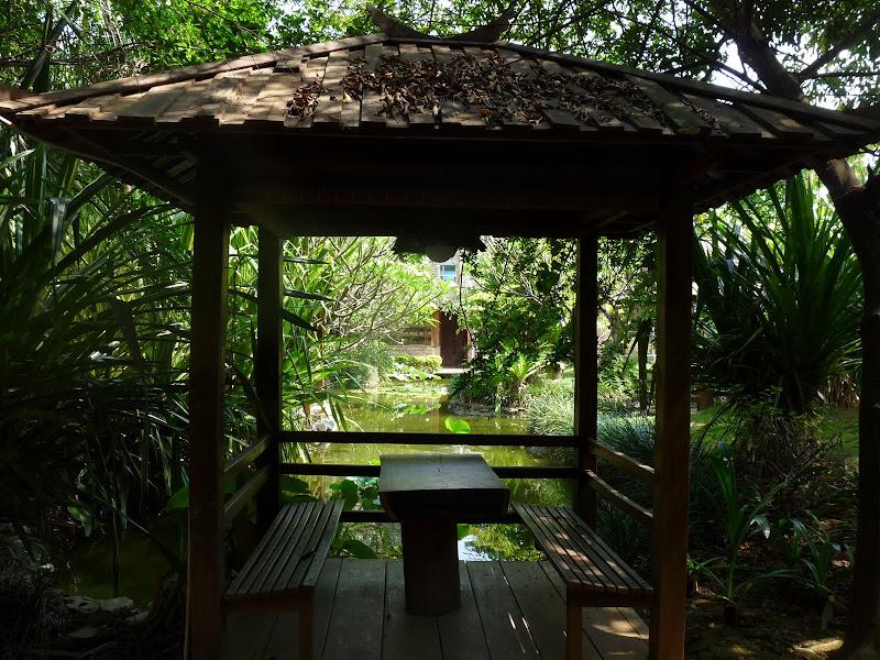 Chine .Yunnan . Lac au sud de Kunming ,Jinghong xishangbanna,+ grand jardin botanique, de Chine +j - Picture1%2B550.jpg