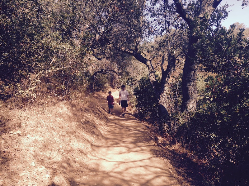 Hike1016