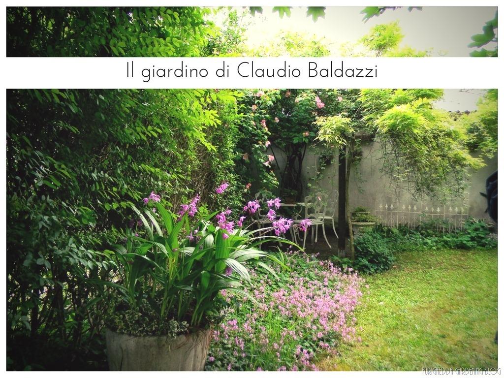 [Il+giardino+di+Claudio+%287%29%5B3%5D]