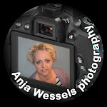 Anja Wessels Photography