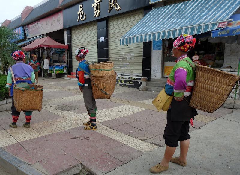 Chine.Yunnan Wen shan et BA MEI 1 - P1260835.JPG
