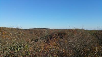 Blick auf das Pulkau Tal