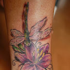 dragonfly - tattoo meanings