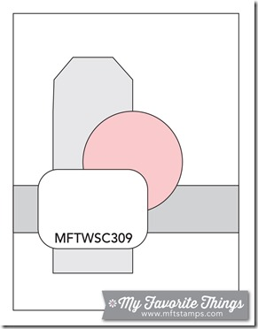 MFT_WSC_309