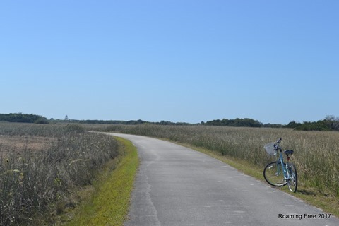 Biking in the Everglades