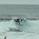 _DSC2394.thumb.jpg