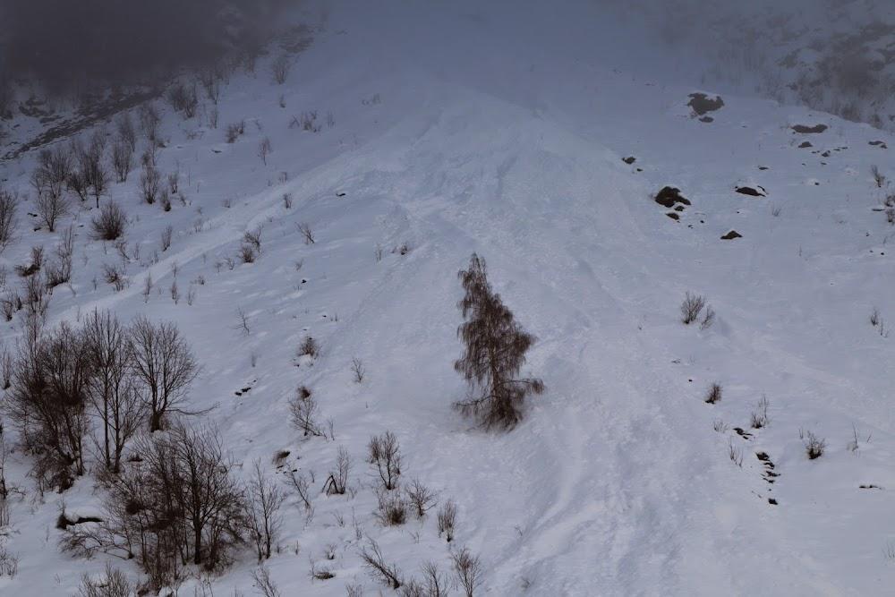 Avalanche Ecrins, secteur Valgaudemar, Torrent de la Sapinière - RD480 - Photo 1