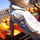 Pumpkin Patch 2014 - 1004101806.jpg
