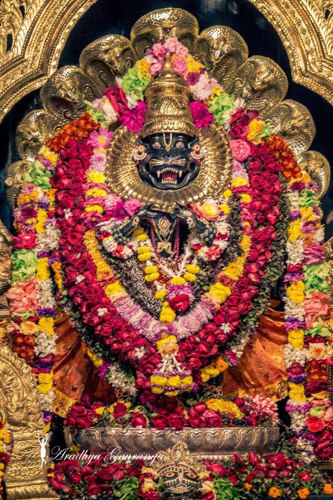 ISKCON Mayapur Deity Darshan 18 Jan 2017 (20)
