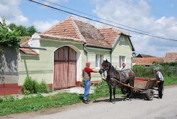 Pferdefuhrwerke in Retis