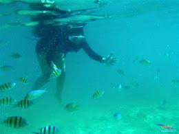 pulau harapan, 23-24 mei 2015 panasonic 24