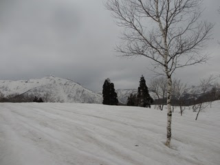 和田山牧場跡の一端に着くと野伏ヶ岳がようやく姿を現せる