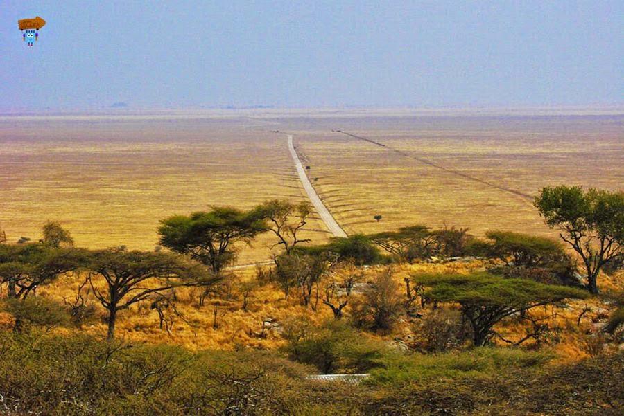 Parque Nacional Serengueti, Tanzania, otra de las maravillas naturales del mundo