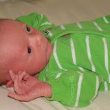 Meet Marshall! - 115_2574.JPG