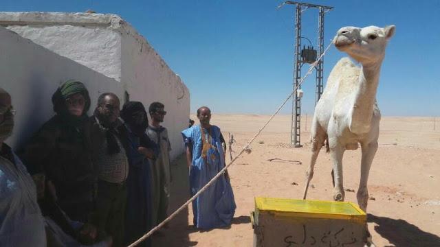 مبادرة حميدة ولفتة إنسانية لصالح ضحايا الحرب والالغام بالصحراء الغربية