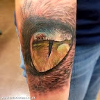 Tiger Eye with reflection of elephant - Arm Tattoos Designs