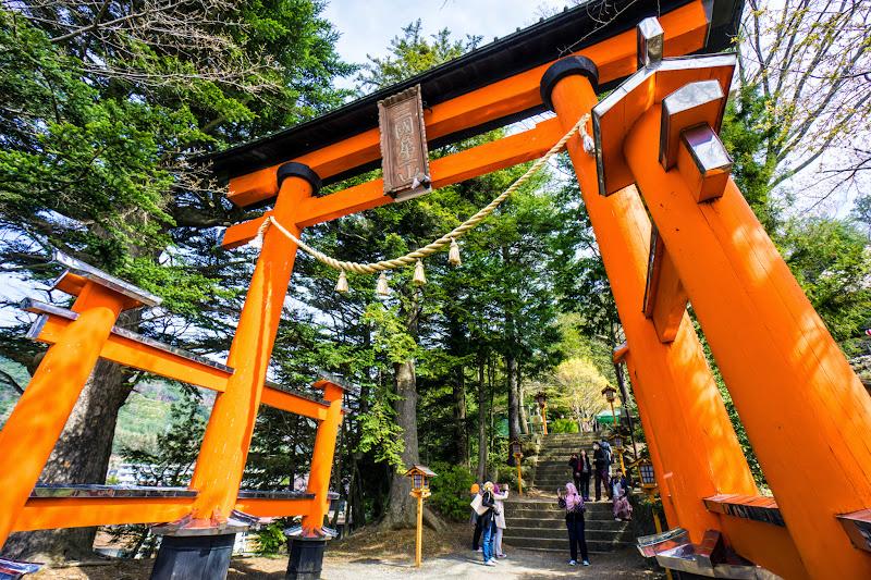 新倉富士浅間神社 桜 写真3