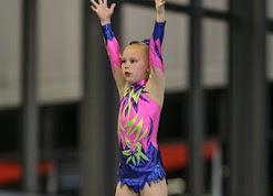 Han Balk Fantastic Gymnastics 2015-1779.jpg