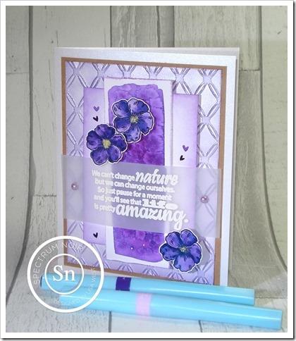 Lilac Dreams (3)
