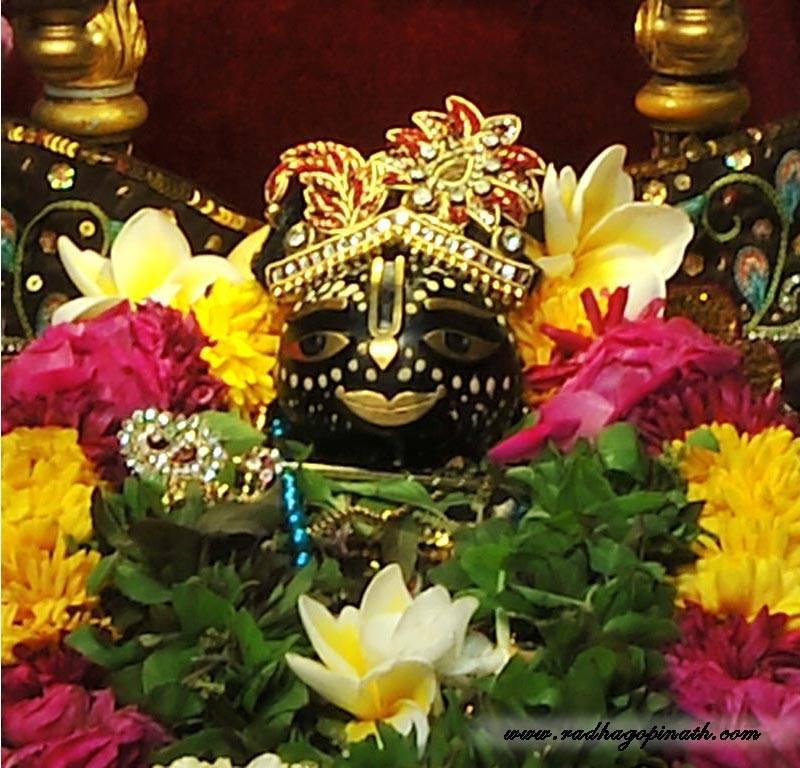 ISKCON Chowpatty Deity Darshan 01 Mar 2016  (20)