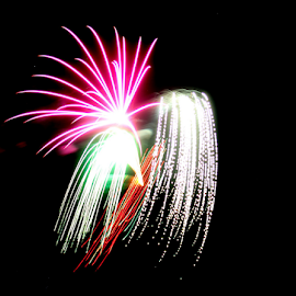 Fireworks by Susanne Carlton - Abstract Fire & Fireworks