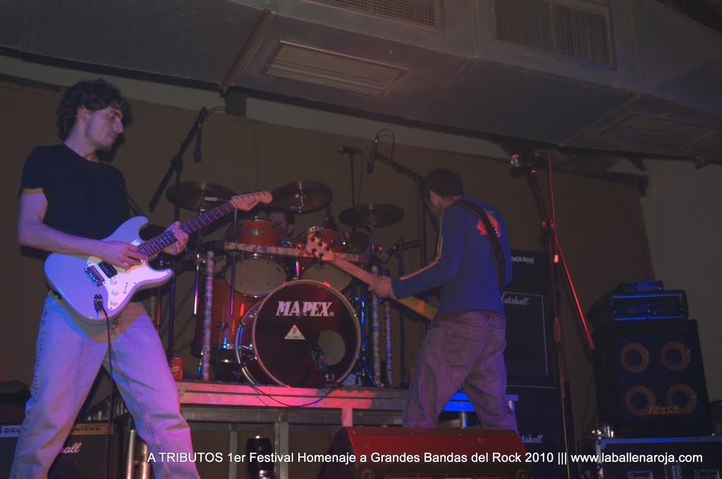 A TRIBUTOS 1er Festival Homenaje a Grandes Bandas del Rock 2010 - DSC_0084.jpg