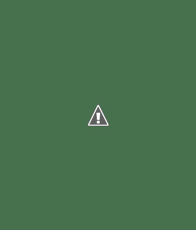 A kiállítás látogatói