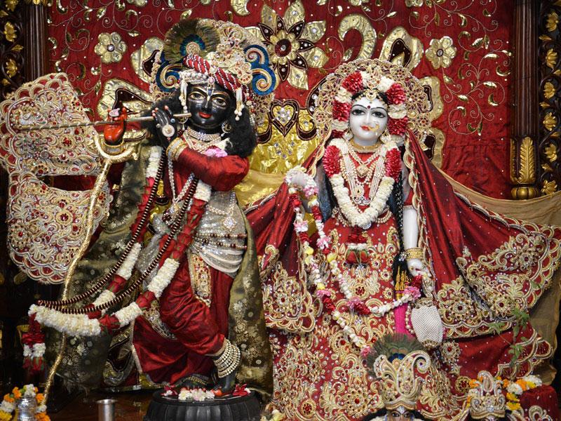 ISKCON Ahmedabad Deity Darshan 30 Mar 2016  (1)
