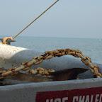 La corroción por cuenta del mar