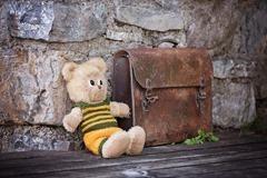 teddy-828506_1280