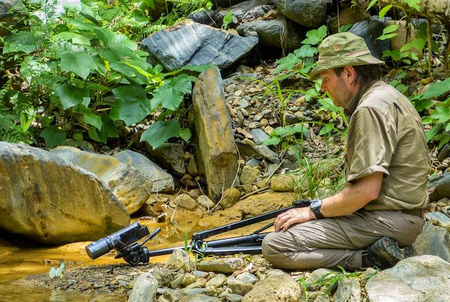 Henrik Bloch filmant Papilionidae et Pieridae. Confluent des ríos Mula Muerte et Zongo  (700 m), à l'ouest de Caranavi (Yungas, Bolivie), 15 décembre 2014. Photo : Jan Flindt Christensen