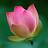 Meenakshi Lakshmanan avatar image
