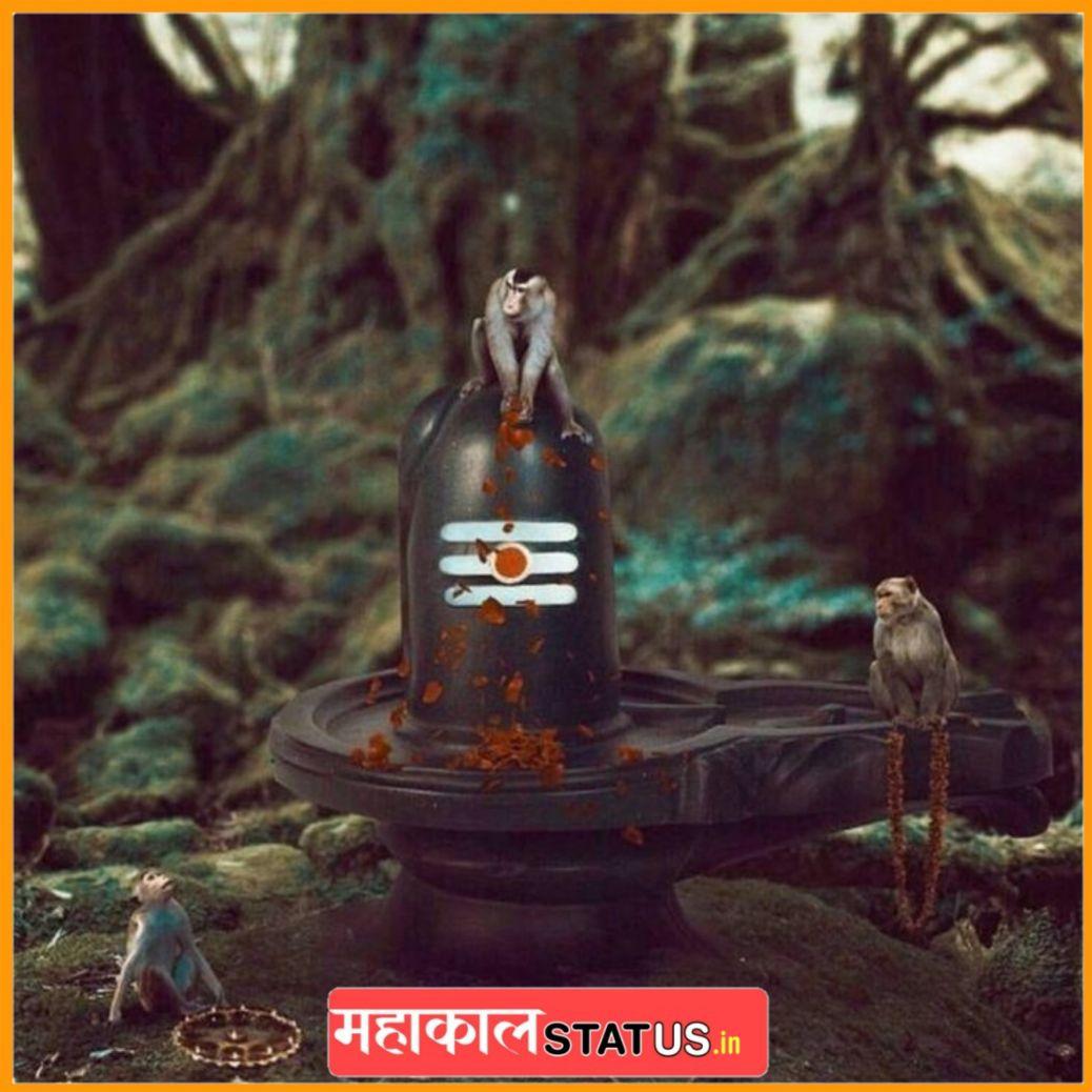 Mahakal HD DP