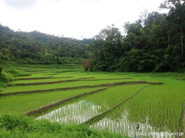 trekking-norte-tailandia-minorias-etnicas--unaideaunviaje.com-18.jpg