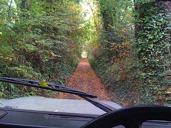 Into the lane... carpet of autumn leaves hadn't been disturbed since the start of autumn a week ago..