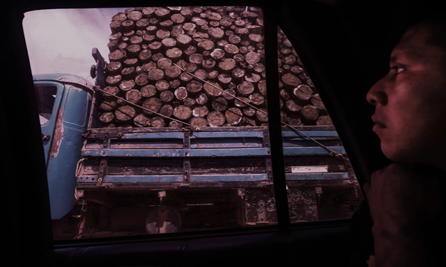 Hira, a Ka'apor indigenous leader and forest guardian in Maranhão state, Brazil, finds an illegal logging truck. Photo: Lunae Parracho / The Observer