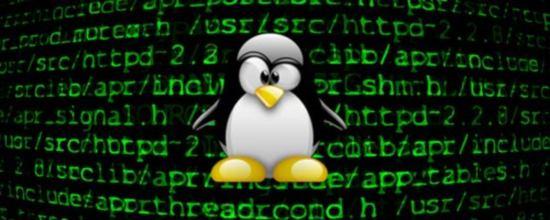 Tux-comando-terminal-consola-linux.jpg