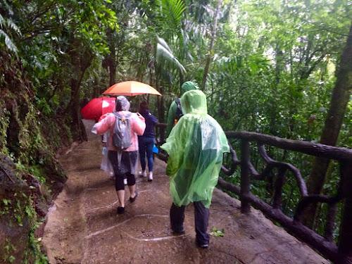 People in rain ponchos