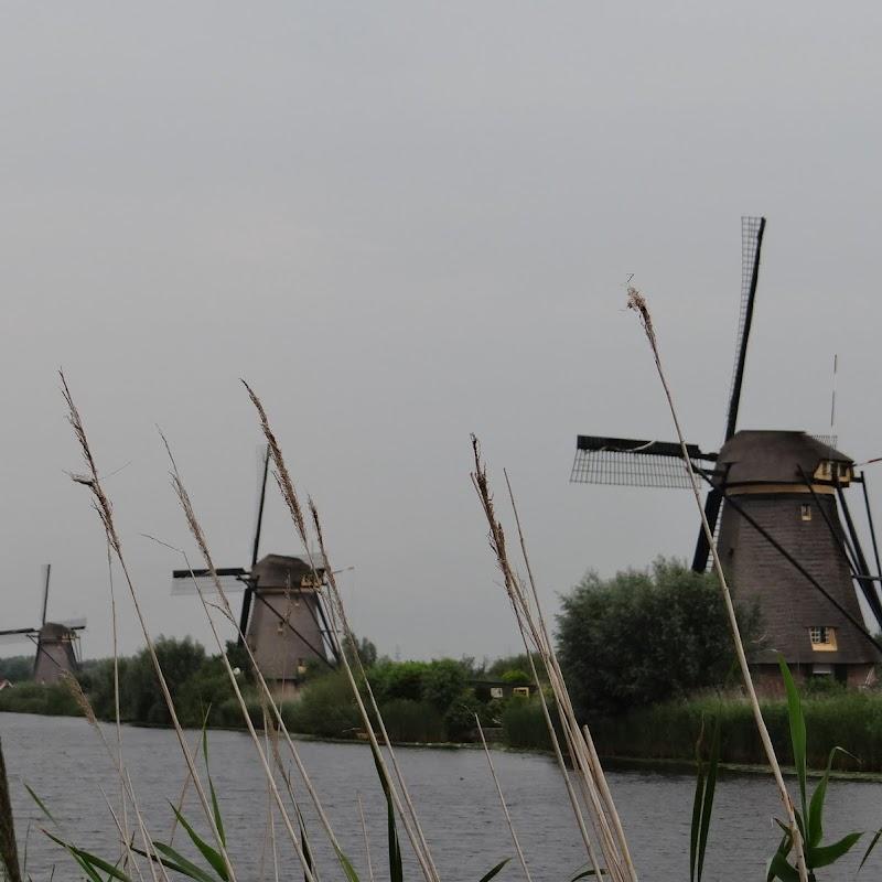 Day_6_Kinderdijk_33.JPG